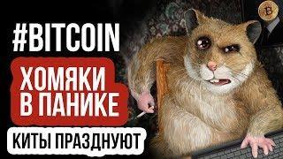 БИТВА КИТОВ И ХОМЯКОВ! АНАЛИЗ ЦЕНЫ БИТКОИН! Новости bitcoin, курс биткоина и прогноз криптовалюты
