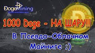 DogeMining.zone - Как заработать 1000 Doge - и возможно ли??? Псевдо Облачный Майнинг