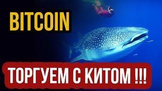BTC - ТОРГУЕМ С КИТОМ против ТОЛПЫ! новости биткоин, прогноз биткоина сегодня! курс bitcoin