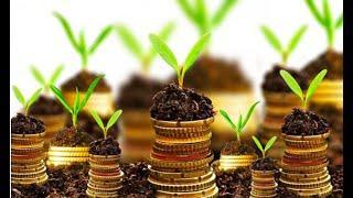 FX Trading & Результат в Бизнесе во многом зависит от скорости Вашего решения!