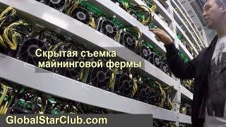 Скрытая сьемка майнинговой фермы BitClub Network