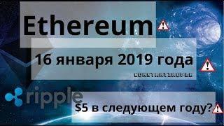 Ethereum. 16 января 2019 года. Constantinople. Ripple $5 в следующем году? Курс биткоина