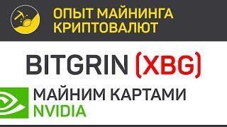BitGrin (XBG) майним картами Nvidia (algo CUCKOO) | Выпуск 162 | Опыт майнинга криптовалют