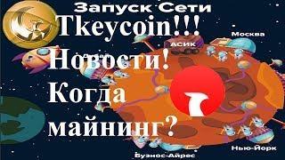 Запуск сети Tkeycoin (TCD)! Новости проекта! Когда майнинг и листинг?