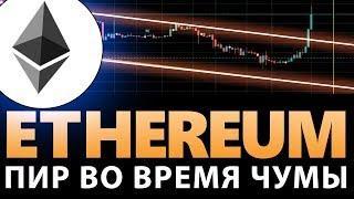 Эфириум растет, пока Биткоин падает! Новости криптовалют сегодня, 24 декабря