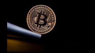 Litecoin NOT ICO, Bitcoin Maximalists; Rakuten Crypto Exchange; Bitcoin Home Buying Doubles