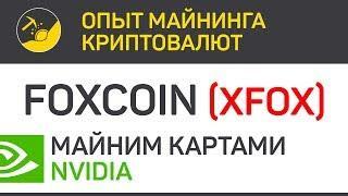 Foxcoin (XFOX) майним картами Nvidia (algo phi1612) | Выпуск 176 | Опыт майнинга криптовалют