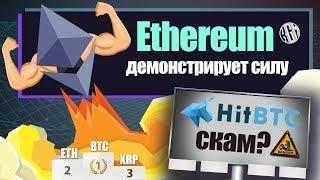 Ethereum демонстрирует силу. Биржа HitBtc - скам? Рост криптовалют