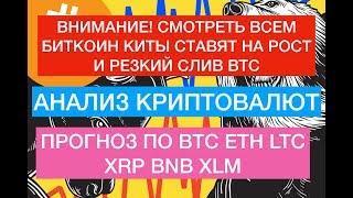 Биткоин киты ставят на рост цены! 10000 за Bitcoin уже скоро?!