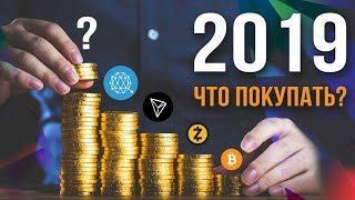 Какая криптовалюта вырастет в 2019 году? Покупать или продавать?