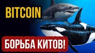 Биткоин - борьба КИТОВ! Прогноз биткоина и анализ курса bitcoin  Новости биткоин btc