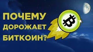 Биткоин идет на $ 330 000? Последние новости Bitcoin и прогнозы экспертов