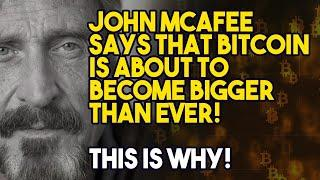 JOHN MCAFEE SAYS THAT BITCOIN IS ABOUT TO BECOME BIGGER THAN EVER! This is Why!