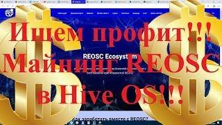 Ищем профит!!!  Майнинг REOSC  в Hive OS!!! Есть депозит и мастерноды!
