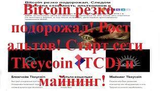 Хорошие новости! Bitcoin резко подорожал! Рост альтов! Старт сети Tkeycoin (TCD) и майнинг!