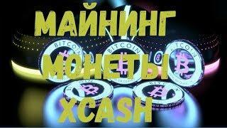 Майнинг монеты XCASH картами AMD на алгоритме криптонайт, практическое руководство