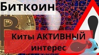 Биткоин Киты АКТИВНЫЙ интерес. Ethereum. Istanbul. Октябрь 2019. Первые моменты