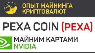 PexaCoin (PEXA) - майним картами Nvidia (algo X16R) | Выпуск 269 | Опыт майнинга криптовалют