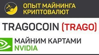 Tragocoin (TRAGO) - майним картами Nvidia (algo X16R) | Выпуск 257 | Опыт майнинга криптовалют
