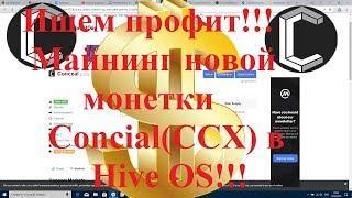 Ищем профит!!! Майнинг новой монетки Concial(CCX) в Hive OS!!!