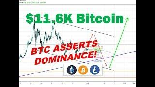 Bitcoin Reclaiming Dominance - Litecoin and Ethereum BULL MARKET TARGETS