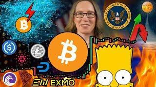 "Bitcoin Bull Run is Inevitable, Just a Matter of WHEN? Harvard Cryptographer: ""Crypto is Useless"""
