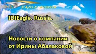 IDIEagle. Russia. Новости о компании от Ирины Абалаковой