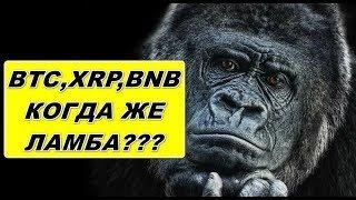Прогноз курса криптовалют BTC, XRP, BNB 17.10.2019