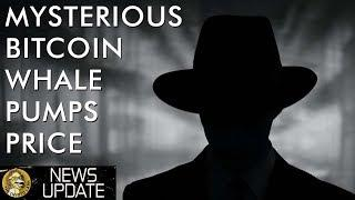 Bitcoin Prices News Explained - $100,000,000 BTC Purchase By Mystery Whale - Who Was It?