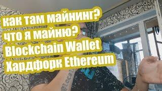 Как там майнинг? Что я майню? Blockchain Wallet, Хардфорк Ethereum Classic