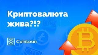 Биткоин жив!?! Рост криптовалют продолжится?!? | Обзор bitcoin и рынка крипты в 2019