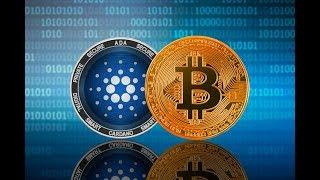 An ADA Cardano Bullrun Could be Bad News For Bitcoin And Ethereum Here is Why
