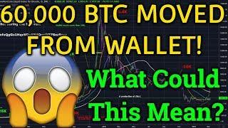 60,000 BTC Moved From Wallet!? Bitcoin Important Price Zone! (Bitmex Trading + Cryptocurrency News)