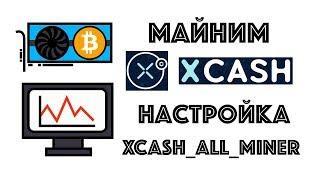 X-CASH настройка майнера и доходность