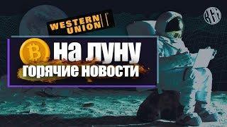 Ложный рост криптовалют или to the moon? Новости - БИТКОИН БЕЗ ИНТЕРНЕТА!