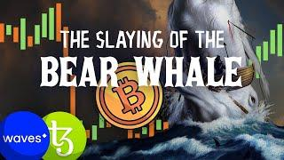 BIG Bitcoin Move Coming